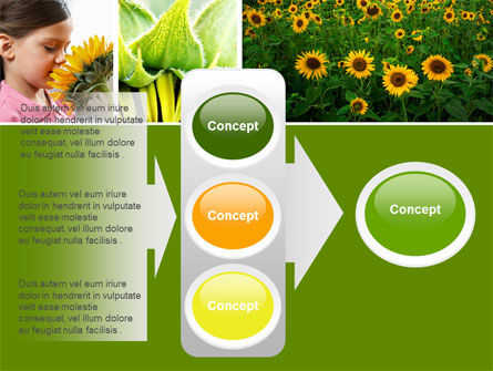 Sunflower Collage PowerPoint Template Slide 11