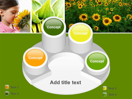 Sunflower Collage PowerPoint Template Slide 12