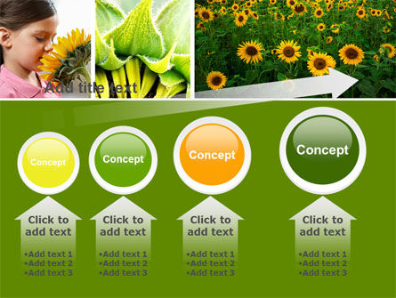 Sunflower Collage PowerPoint Template Slide 13
