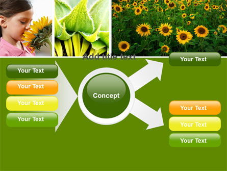 Sunflower Collage PowerPoint Template Slide 14
