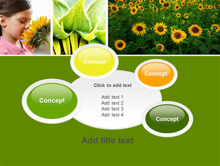 Sunflower Collage PowerPoint Template Slide 16