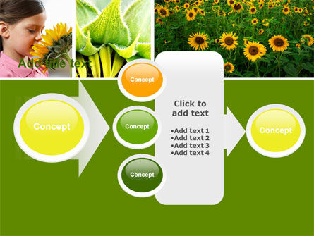 Sunflower Collage PowerPoint Template Slide 17