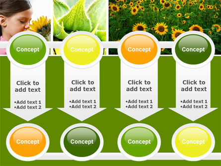 Sunflower Collage PowerPoint Template Slide 18