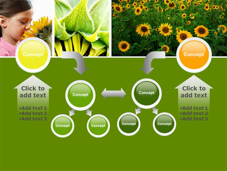 Sunflower Collage PowerPoint Template Slide 19