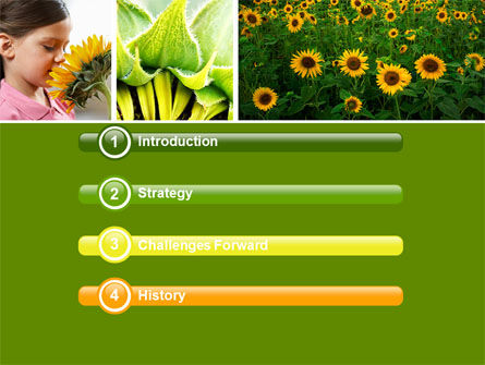 Sunflower Collage PowerPoint Template Slide 3