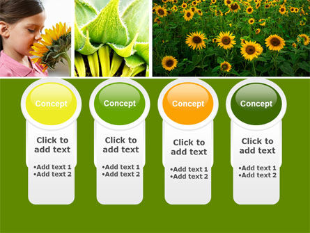 Sunflower Collage PowerPoint Template Slide 5