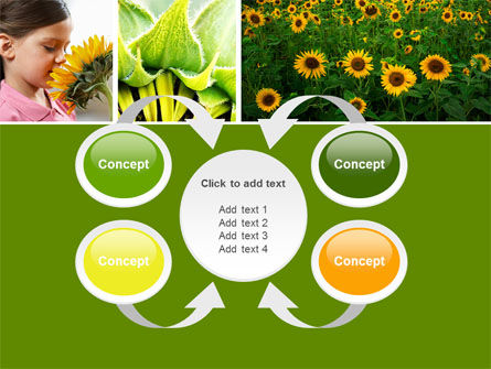 Sunflower Collage PowerPoint Template Slide 6