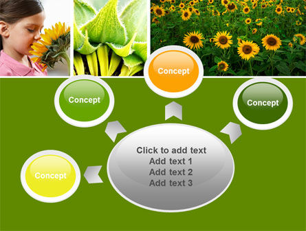 Sunflower Collage PowerPoint Template Slide 7