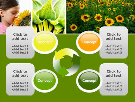 Sunflower Collage PowerPoint Template Slide 9