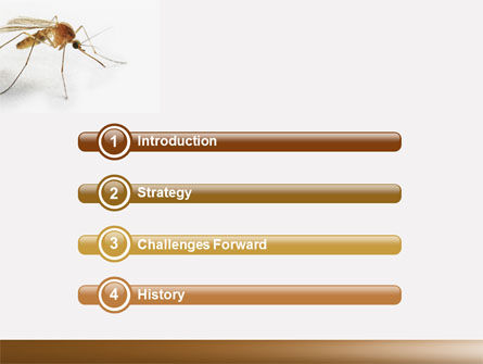 Mosquito powerpoint template backgrounds 04599 poweredtemplate mosquito powerpoint template slide 3 04599 animals and pets poweredtemplate toneelgroepblik Gallery