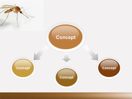 Mosquito powerpoint template backgrounds 04599 poweredtemplate mosquito powerpoint template slide 4 04599 animals and pets poweredtemplate toneelgroepblik Gallery