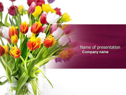 Tulips On A Purple Background PowerPoint Template, 04614, Holiday/Special Occasion — PoweredTemplate.com