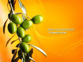Agriculture: Olives PowerPoint Template #04622