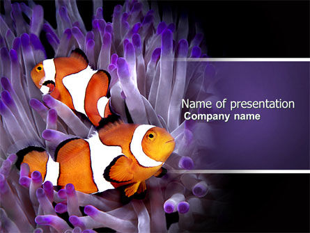 Nature & Environment: Clown Fish PowerPoint Template #04626