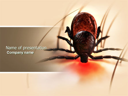 Mite PowerPoint Template, 04636, Medical — PoweredTemplate.com