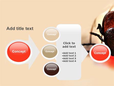 Mite PowerPoint Template Slide 17