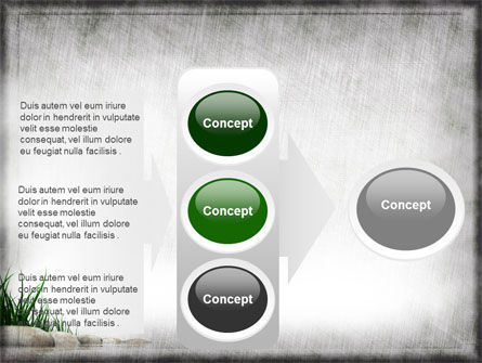 Stones and Grass PowerPoint Template Slide 11