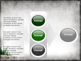 Stones and Grass PowerPoint Template#11