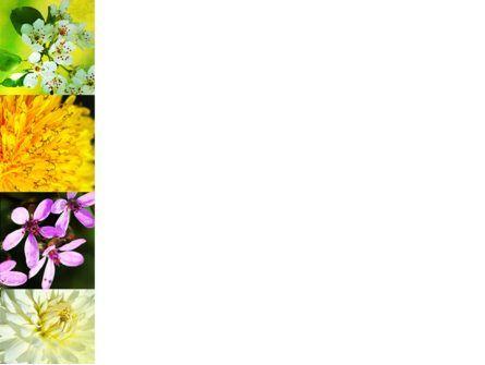 Floristic PowerPoint Template, Slide 3, 04648, Nature & Environment — PoweredTemplate.com