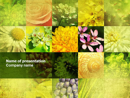 Floristic PowerPoint Template, 04648, Nature & Environment — PoweredTemplate.com