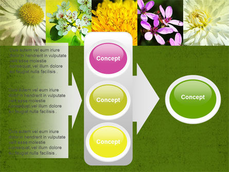 Floristic PowerPoint Template Slide 11