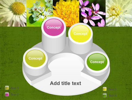Floristic PowerPoint Template Slide 12