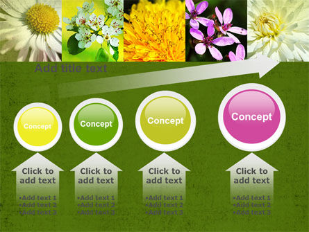 Floristic PowerPoint Template Slide 13
