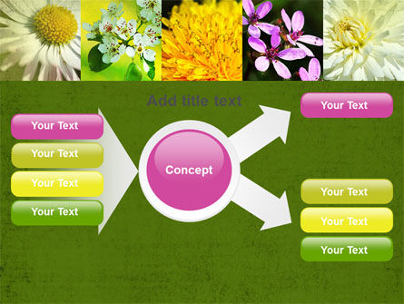 Floristic PowerPoint Template Slide 14