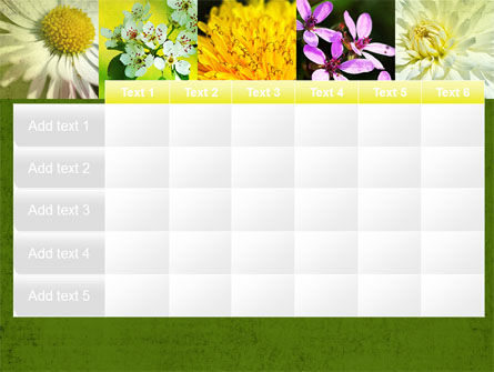 Floristic PowerPoint Template Slide 15