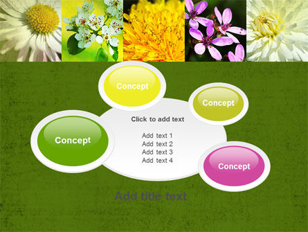 Floristic PowerPoint Template Slide 16