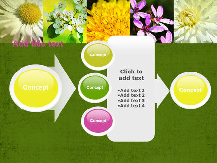 Floristic PowerPoint Template Slide 17