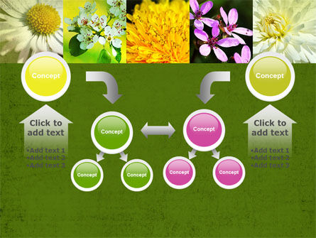 Floristic PowerPoint Template Slide 19