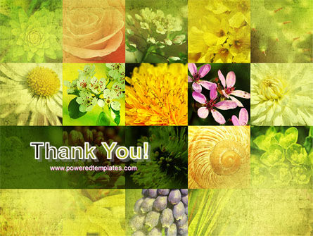 Floristic PowerPoint Template Slide 20