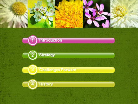 Floristic PowerPoint Template, Slide 3, 04648, Nature & Environment — PoweredTemplate.com