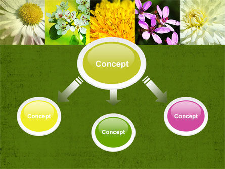 Floristic PowerPoint Template, Slide 4, 04648, Nature & Environment — PoweredTemplate.com