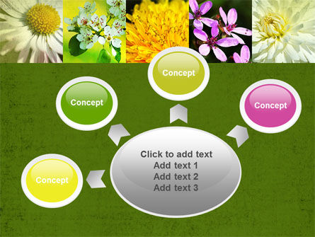 Floristic PowerPoint Template Slide 7