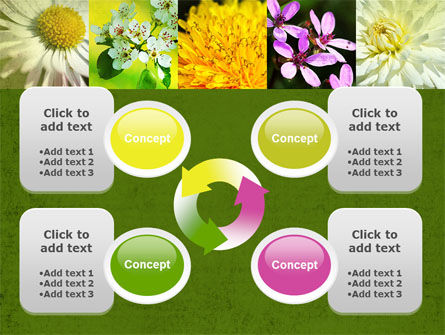 Floristic PowerPoint Template Slide 9