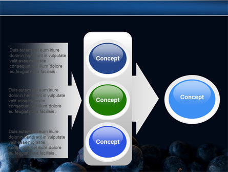 Bilberry PowerPoint Template Slide 11
