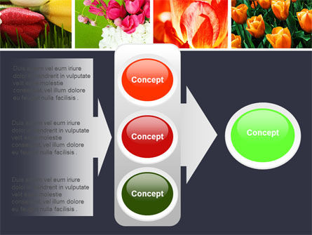 Tulips PowerPoint Template Slide 11