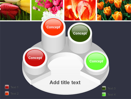 Tulips PowerPoint Template Slide 12