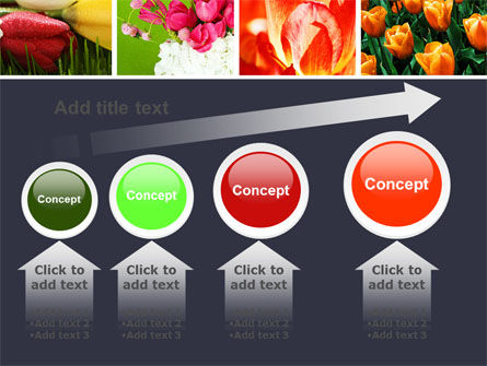 Tulips PowerPoint Template Slide 13