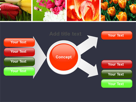 Tulips PowerPoint Template Slide 14