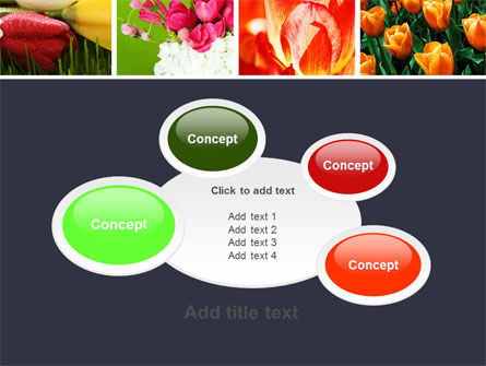 Tulips PowerPoint Template Slide 16