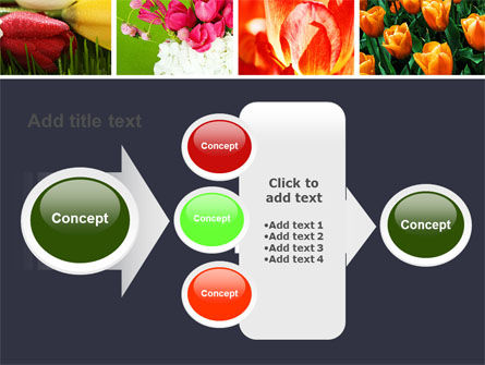 Tulips PowerPoint Template Slide 17