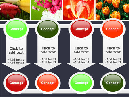 Tulips PowerPoint Template Slide 18