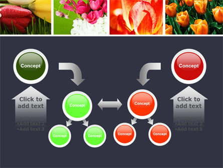 Tulips PowerPoint Template Slide 19