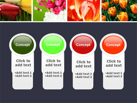Tulips PowerPoint Template Slide 5