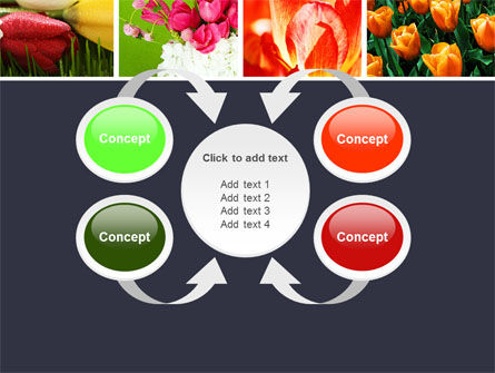 Tulips PowerPoint Template Slide 6