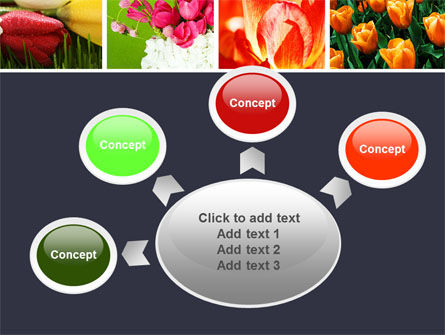 Tulips PowerPoint Template Slide 7