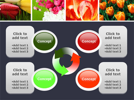 Tulips PowerPoint Template Slide 9